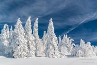 Feldberg Winter (10 von 12)