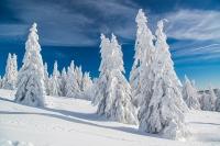 Feldberg Winter (11 von 12)