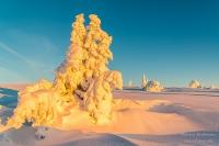Feldberg Winter (4 von 12)