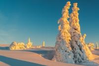Feldberg Winter (5 von 12)