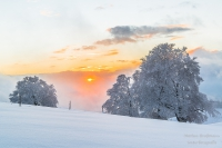 Schauinsland Winter (147 von 150)