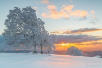 Schauinsland winter (66 von 101)