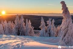 Feldberg Winter (3 von 12)