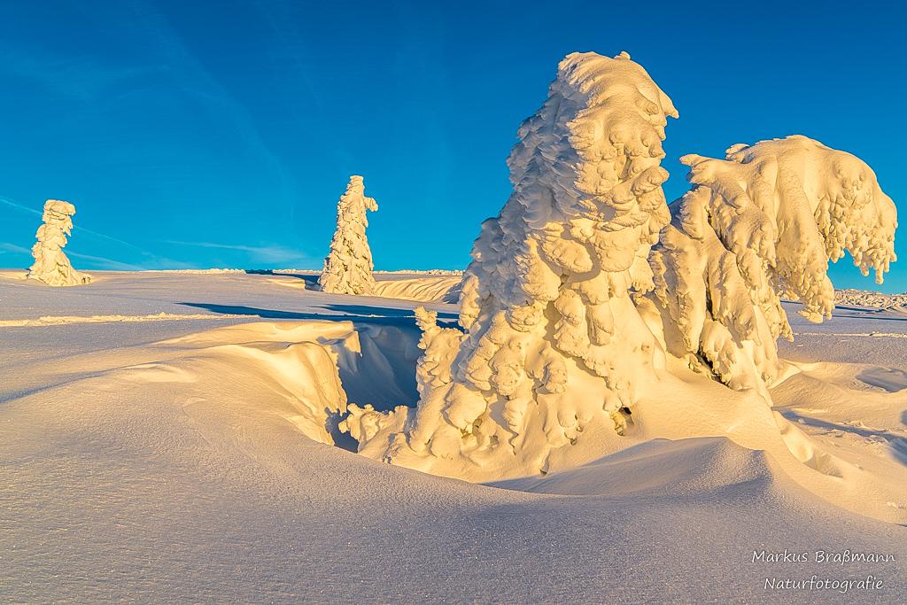 Feldberg Winter (9 von 12)